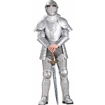 Knight in Shining Armor Adult Costume 38-60474
