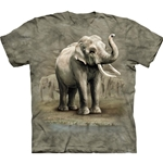 Asian Elephants Adult Plus Size T-Shirt 43-1018680