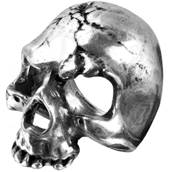 Ruination Skull Ring Pewter Alchemy R174