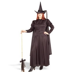 Classic Witch Plus Adult 38-19328