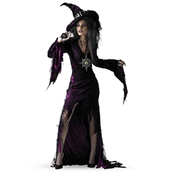 Sorceress Adult Costume 38-4805