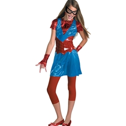 Spider-Girl Teen Costume 38-50238