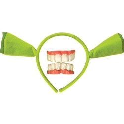Shrek Forever After - Shrek Accessory Kit (Child)  38-70539