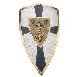 Charlemangne Decorative Shield AA805