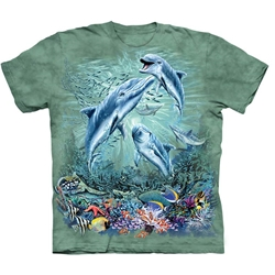 Find 12 Dolphins Youth's Tee Shirt 43-1534900