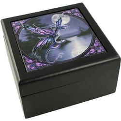 Anne Stokes Dragonfly Box 45-FB081
