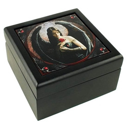 Anne Stokes Angel Rose Box 45-FB153