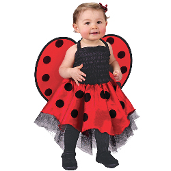 Lady Bug Infant Costume 100-126124