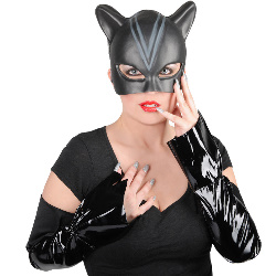 Catwoman Accessory Kit (Adult) 100-126778
