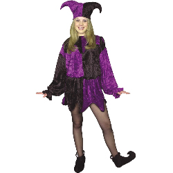 Jester Adult Plus Costume 100-127467