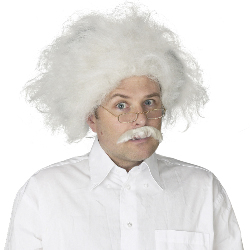 Einstein Wig Adult 100-135335