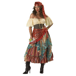 Fortune Teller Elite Collection Adult Costume 100-147154