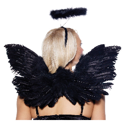 Black Deluxe Feather Angel Accessory Kit (Adult) 100-151744