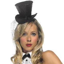 Mini Top Hat With Veil 100-154629