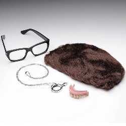 Austin Powers Deluxe Accessory Kit (Adult) 100-102070