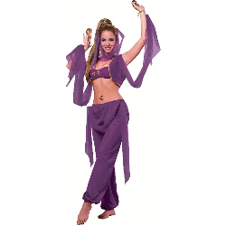 Desert Princess Adult Costume 100-179564
