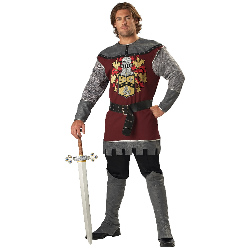 Noble Knight Adult Costume 100-181400