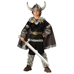 Viking Warrior Child Costume 100-196452