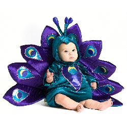 Baby Peacock Infant / Toddler Costume 100-197712