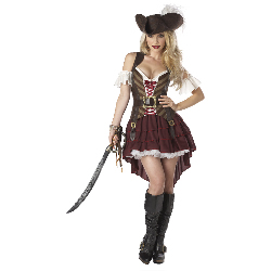 Sexy Swashbuckler Adult Plus Costume 100-198761