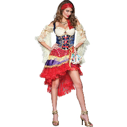 Good Fortune Adult Costume 100-213603