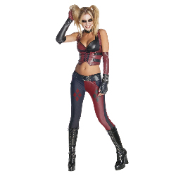 Batman Arkham City Secret Wishes Harley Quinn Adult Costume 100-215137
