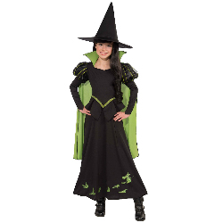 Wizard of Oz - Wicked Witch Of The West Child Costume 100-218039