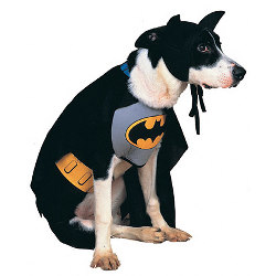 Batman Pet Costume CU50445