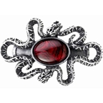 Serpants Eye Hair Slide Pewter Alchemy HH8