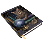 Fortune Teller Journal