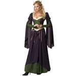 Lady in Waiting Adult Costume 38-802079