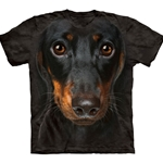 Daschund Head Adult T-Shirt 43-1033340