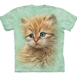 Kitten Portrait Adult T-Shirt 43-1034680