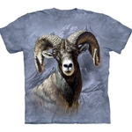 Big Horn Sheep Adult T-Shirt 43-1035010