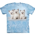 Plus Size Cloud Kitten Adult T-Shirt