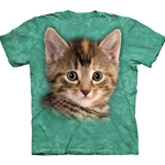 Striped Kitten Adult T-Shirt Plus Size
