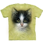 Green Eyed Kitten Youth's Tee Shirt 43-1534630