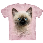 Black and Tan Kitten Youth's Tee Shirt 43-1534640