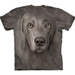 Weimaraner Youth's Tee Shirt