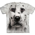 Dalmatian Face Youth's Tee Shirt 43-1535470