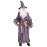 The Lord Of The Rings  Gandalf  Adult 100-112530