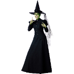 Witch Elite Collection Adult Costume 100-135506
