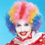 Rainbow Economy Clown Wig 100-141487