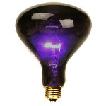 Black Spotlight Bulb (75 Watt) 100-146244