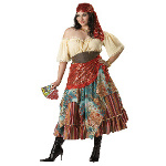 Fortune Teller Elite Collection Adult Plus Costume 100-147094