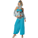 Harem's Jewel Elite Collection Adult Costume 100-152015
