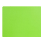 Lime Green Activity Placemats 101-173913
