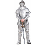 Knight in Shining Armor Adult Costume 100-179569