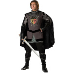 Dark Knight Adult Costume 100-181302