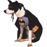 Batman Dog Costume 100-100134